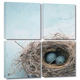 Found it at Wayfair - 'Blue Nest' by Elena Ray 4 Piece Graphic Art on Canvas Set