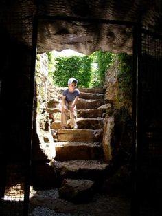 Spoorzoeken in een doolhof van heggen - Activiteit in Saint-Maur