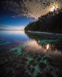Through the reflection Photo by Antonio Wijaya -- National Geographic Your Shot