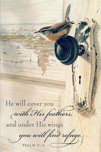 a comforting Scripture...Psalm 91:4