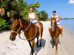 Horseback riding on the beach, Anna Maria Island, FL