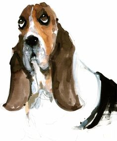 Becky Brown | Basset