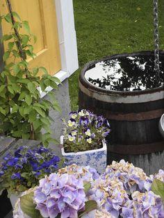 Vanntønna i eik, kjøpt på Bornholm. Litt morken og rustikk tønne, skal bli spennende å se hvor lenge den holder...