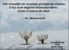 Allah Islam, Islam Quran, Best Love Messages, Good Sentences, Rumi Quotes, Islam Religion, Magic Words, Sufi, Meaningful Words