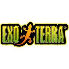 Exo Terra Water Well for Reptiles - Walmart.com - Walmart.com Lizard Habitat, Small Basin, Water Well, Reptiles And Amphibians, Water Supply, Habitats, Fresh Water, Exo, Wellness