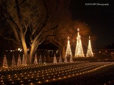 Illuminations at Botanica Gardens, Wichita, Kansas