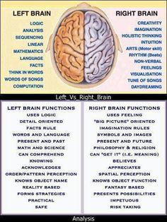 ¿qué parte del cerebro usas más?
