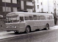 LTM-bus