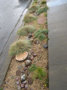 Rock Garden - I like the mulch combined with the wavy rock design