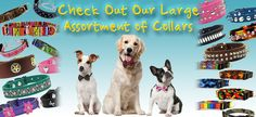 A leading online provider of fashion apparel for dogs includes dog costumes, sports apparel, t-shirts and hoodies. Our selection of dog collars is out of this world, with a complete variety including spiked, jeweled, leather and Martingale collars.  #DogCollars #DogCostumes #MartingaleCollars