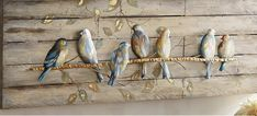 Bathroom Hooks, Wood Scraps, Wild Animals, Frames, Pictures