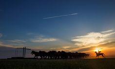 Lenyűgöző fotókon mutatja meg magát a Hortobágy | Sokszínű vidék