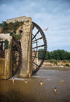Syria, 1954 Youths make an improvised diving platform out of a giant old water wheel, or noria, which supplied the houses, gardens and mosques of Hama, western Syria, with water from the Orontes river. More than 30 of these wheels, which date from medieval times, once lined the river, their creaking noises audible miles away.