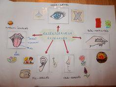 2. osztályos környezethez- Apáczais tanmenet alapján- Érzékszervek - Marci fejlesztő és kreatív oldala Early Education, App Design, Diy And Crafts, Kindergarten, Teaching, Holiday Decor, Frame, Projects, Blog