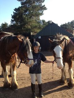 Gilly with Monty and Sherman - two of the lovely Clydesdale horses at Leacett Cottage stables in Cumbria Clydesdale Horses, Work Horses, Cumbria, Horse Breeds, Stables, England, Cottage, World, Animals