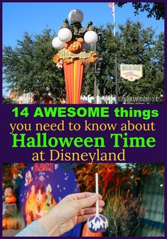 If you're looking for reasons to go to Disneyland for Halloween, I've got them right here. Here are 14 awesome things about Halloween Time at Disneyland! Mickey Halloween Party, Disneyland Halloween, Disneyland October, Halloween Fotos, Scary Halloween, Halloween Office, Cheap Halloween, Disneyland Secrets, Disneyland Food