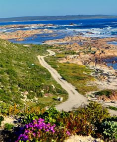 Wheretostay Namibia: Travel Planner & Routes into Namibia Famous Golf Courses, Public Golf Courses, Flower Road, Coeur D Alene Resort, Augusta Golf, Golf Course Reviews, Coeur D'alene, Travel Planner, Cape Town