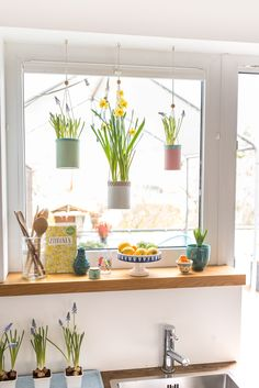 Spring at the window with upcycling hanging baskets- Frühling am Fenster mit upcycling Blumenampeln Homemade upcycling DIY flower boxes from old cans in pastel colors as a decoration for the kitchen window in spring - Spring Decoration, Basket Decoration, Fall Decor, Diy Flower Boxes, Home Decor Baskets, Upcycled Home Decor, Flower Lights, Diy Garden Decor, Hanging Baskets