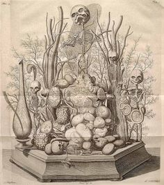 """Frederik Ruysch Ruysch's """"repository of curiosities"""" included displays of infant and fetal skeletons, placed in landscapes of human and animal body parts. This ghastly musicale is notable for its morbid whimsy. Animal Body Parts, Human Body Parts, Crane, Illustrations Médicales, Amsterdam, The Artist, Opus, Vanitas, Memento Mori"""