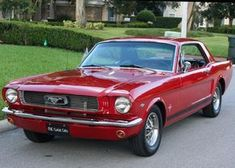 1966 Ford Mustang Coupe | MJC Classic Cars | Pristine Classic Cars For Sale - Locator Service