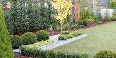 Stepping Stones, The Originals, Garden, Outdoor Decor, Plants, Home Decor, Stair Risers, Garten, Decoration Home