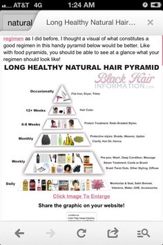 Suggested Natural Hair Care Regimen by polly