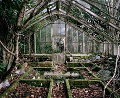 Greenhouse by Tom Wilson on 500px. Hidden in the overgrown grounds of a derelict Victorian manor, Sussex