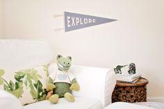Boy's Room   Toddler Room   Safari Theme