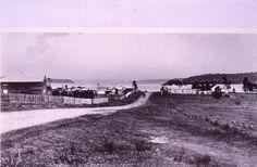 John Turner, Local Studies, Newcastle Nsw, My Town, Historian, Postcards, Sydney, Past, Purpose