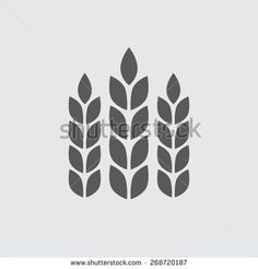 Wheat ears or rice icon. Agricultural symbol. Design elements for bread packaging or beer label. Vector illustration.