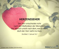 ~ Der Herr entscheidet nicht nach den Maßstäben der Menschen! Der Mensch urteilt nach dem, was er sieht, doch der Herr sieht ins Herz ~ Biblel | 1. Samuel 16,7