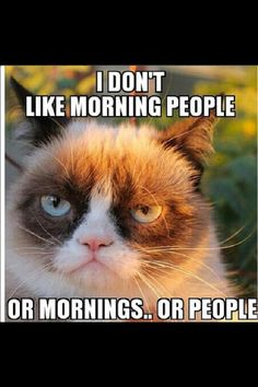 Grumpy Cat | I don't like morning people
