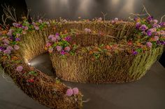 Circle of dreams by Garrik Goh (Singapore) - Floral windows to the world - Singapore Garden Festival