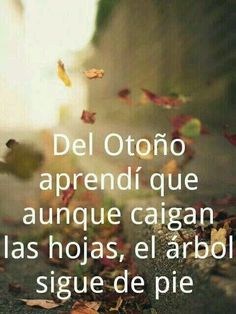 Positive Thoughts, Positive Quotes, Quotes En Espanol, Quotes About Everything, Say That Again, Pretty Quotes, Awesome Quotes, Spanish Quotes, Love Words