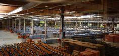 Plate-forme Industrielle Courrier (PIC) de Wissous : machine de tri : vue générale de l'intérieur © photo Didier Goldschmidt, La Poste, DR.
