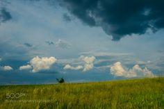 before the storm by andriysolovyov  sky ukraine landscape spring tree green steppe cloud storm rural before the storm andriysolovyov