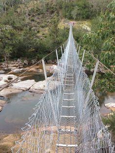 Bridge on the six foot track blue mountains Blue Mountains Australia, Mother Nature, Bridge, Track, Hiking, Walks, Runway, Bridge Pattern, Bridges