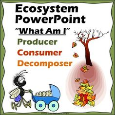 This interactive 27 slide Powerpoint presentation features crisp, clear pics and is a fun way to get your students thinking as they classify organisms. The presentation has a fun background geared for elementary students. Great way to review or to introduce examples of producers, consumers, decomposers, and ecosystems.