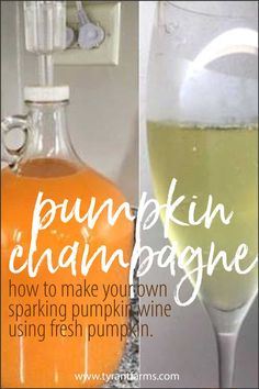 PUMPKIN CHAMPAGNE RECIPE! Champagne Recipe, Champagne Bottles, Pumpkin Wine, Wine Yeast, Fermentation Recipes, Wine Recipes, Homebrew Recipes, Alcohol Recipes, Veg Recipes