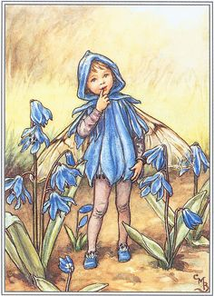 The Scilla Fairy  Cicely Mary Barker