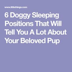6 Doggy Sleeping Positions That Will Tell You A Lot About Your Beloved Pup