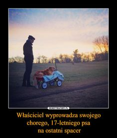 Właściciel wyprowadza swojego chorego, psa na ostatni spacer Beautiful Stories, Animals Beautiful, Dark Love, Life Humor, Dog Grooming, Daily Quotes, Animals And Pets, Pet Adoption, Behind The Scenes