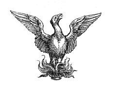 Bildergebnis für barock phönix mythologie Phoenix, Moose Art, Creativity, Illustration, Prints, Animals, Baroque, Mythology, Pictures