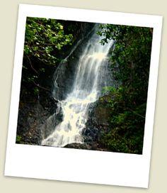 Really cool waterfalls on Oahu worth hiking, explore popular Waimea Falls, Manoa Falls, Maunawili Falls, Likeke Falls and Kapena Falls. Hawaii Vacation Rentals, Hawaii Travel, Summer Travel, Dream Vacations, Hawaii Waterfalls, Waimea Falls, Waterfall Hikes, Travel Activities, Oahu Hawaii