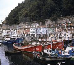 ESPAÑA PESCA: SAN SEBASTIÁN, septiembre 1968.- Barcos de pesca amarrados en el puerto pesquero de San Sebastián. EFE/Fiellafototeca.com Image : efespseven450244
