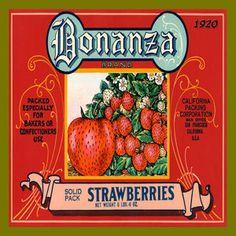 Olde America Antiques | Quilt Blocks | National Parks | Bozeman Montana : Vintage Canning Labels Hot Pads - Bonanza Strawberries