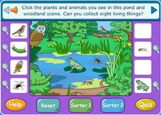 Food Chain Practice and Quiz (scroll down for the one in the picture) Ks2 Science, 1st Grade Science, Elementary Science, Science Classroom, Science Lessons, Teaching Science, Science Activities, Life Science, Teaching Technology