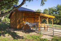 Barn Ponderosa Country Barn project by Sand Creek Post & Beam. View this gallery for ideas on your next dream barn. Horse Shed, Horse Barn Plans, Horse Stables, Horse Farms, Horse Arena, Small Horse Barns, Metal Horse Barns, Metal Barn, Goat Barn