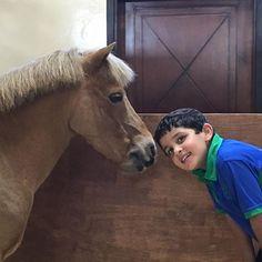 Hamad bin Mohammed bin Hamad Al Sharqi, 29/10/2015. Vía: latifa.mrm