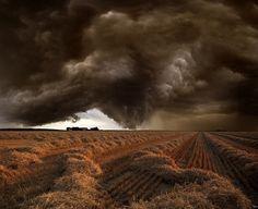 Storm Fields by Franz Schumacher